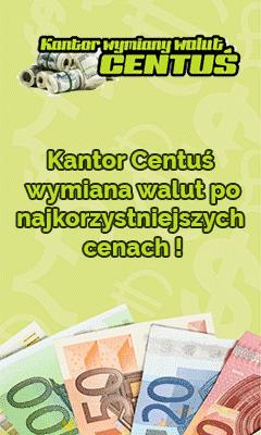 pionowy_prostokat_240x400_V01