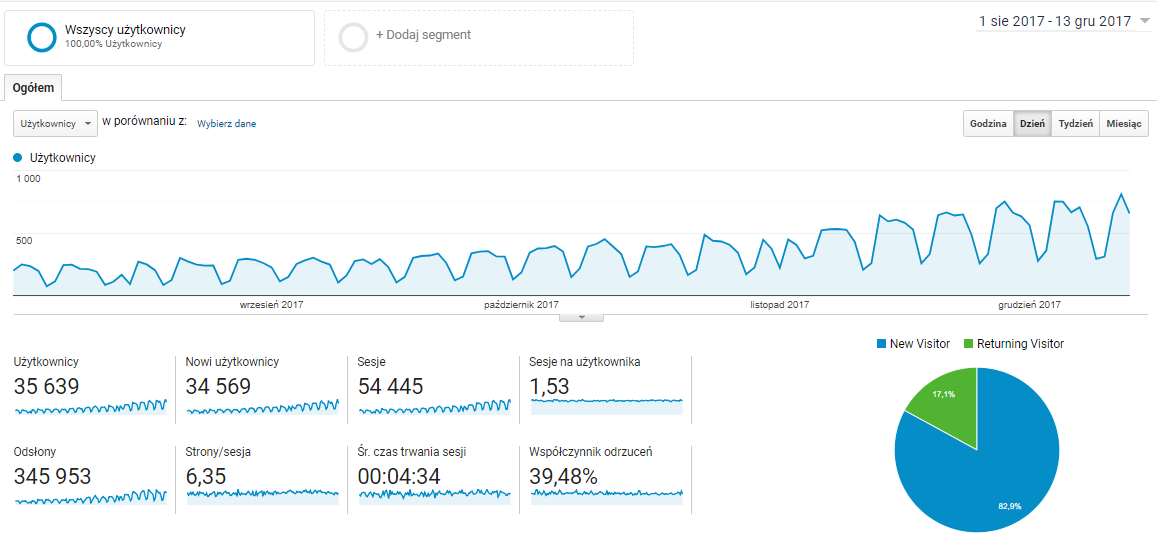 Ruch w sklepie e-commerce - Google Analytics